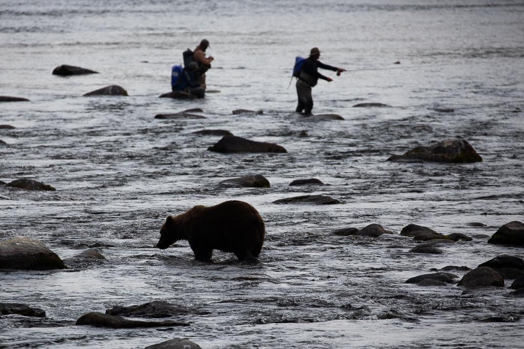 Katmai National Park and Preserve Alaska