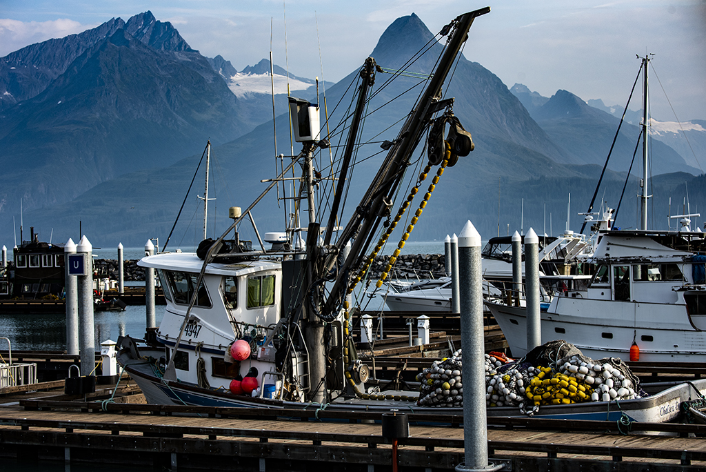 boat in Valdez harbor after fishing