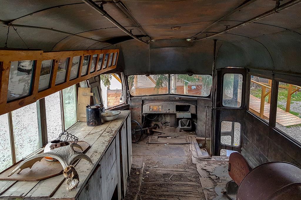 magic bus 142 healy into the wild