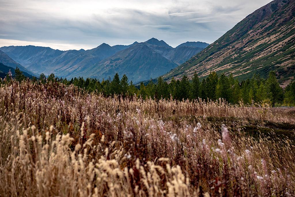 Three best places to visit at Kenai Peninsula Alaska