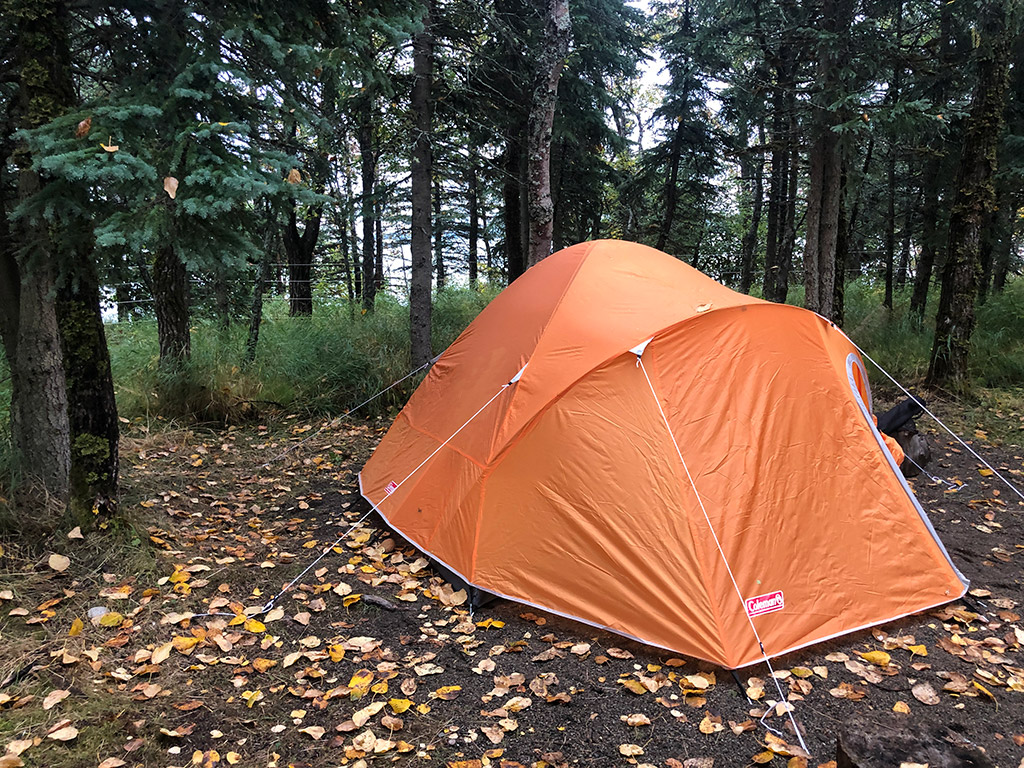 tent put up in the forest