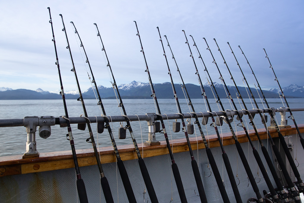 Alaska Road Trip - fishing cruise from Homer