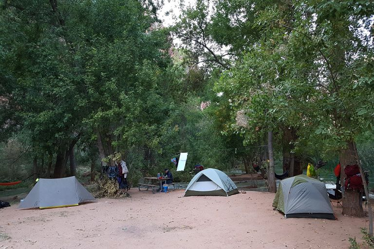 tents at the havasu falls camping