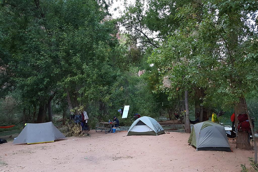 tents at the havasu falls camping