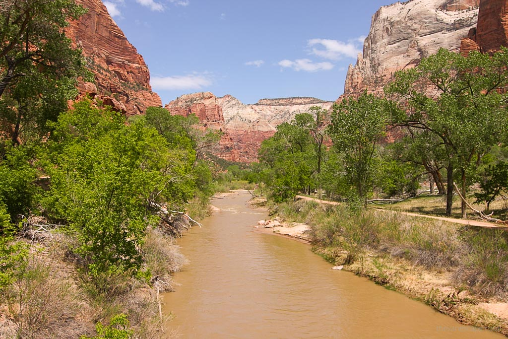 The River, Zion National Park