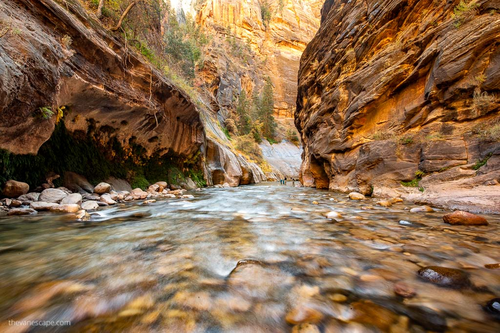 the narrows zion national park hike