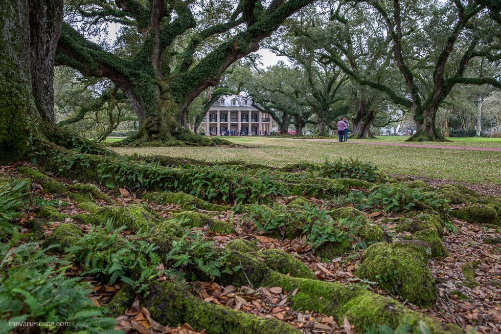 new orleans 3 days itinerary plantation tour