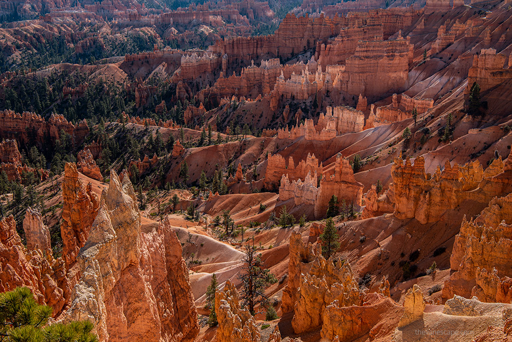 Utah Photography Travel Guide - Bryce