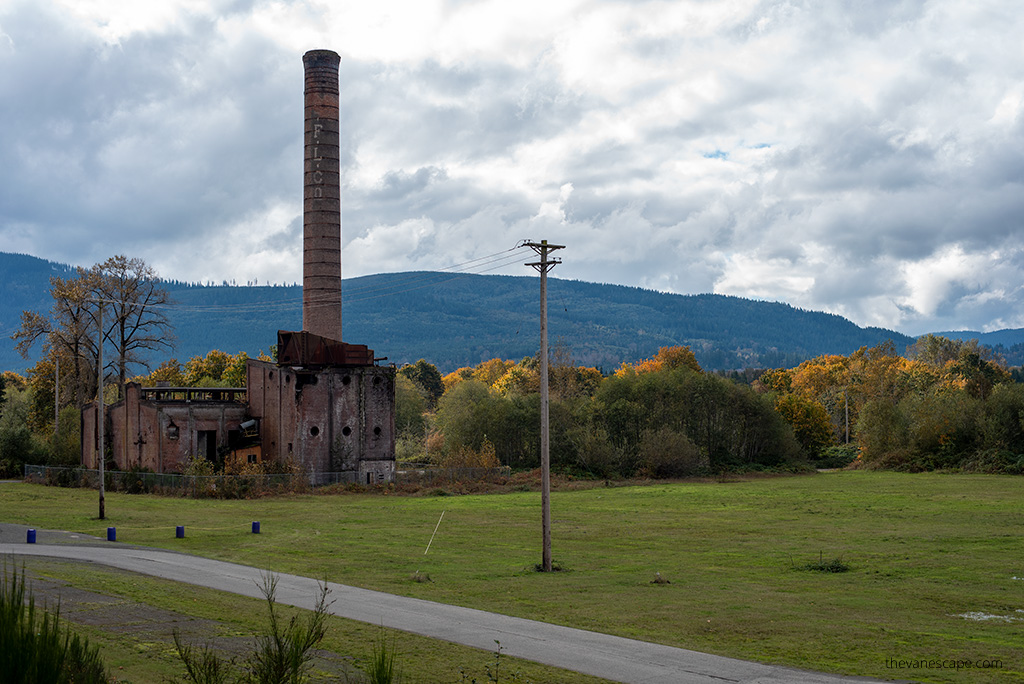 Packard Sawmill Twin Peaks