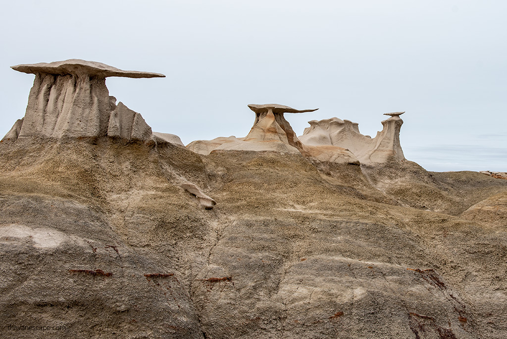 The Stone Wings Bisti Badlands