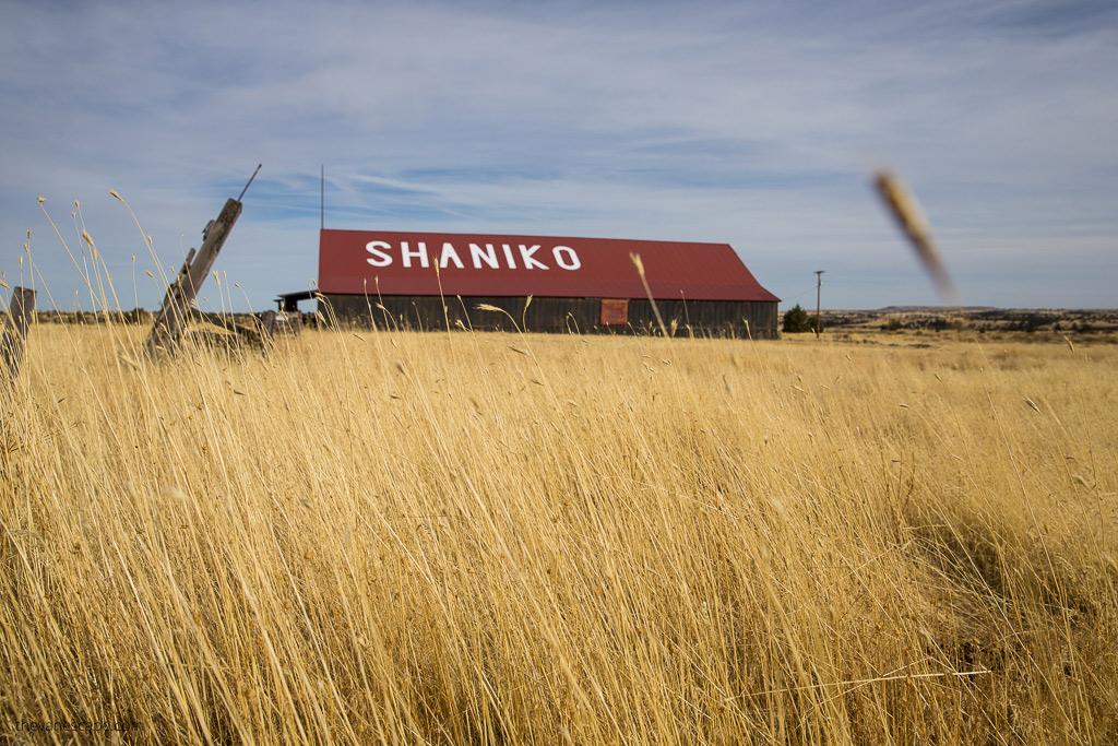 shaniko ghost town