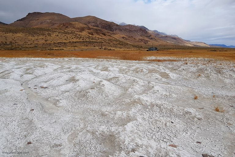 Alvord Desert Hot Springs