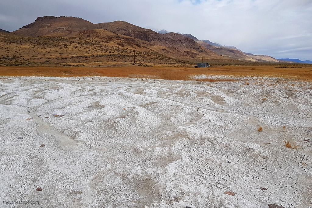 Alvord Desert Hot Springs
