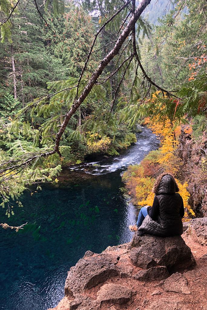 McKenzie River National Recreation Trail