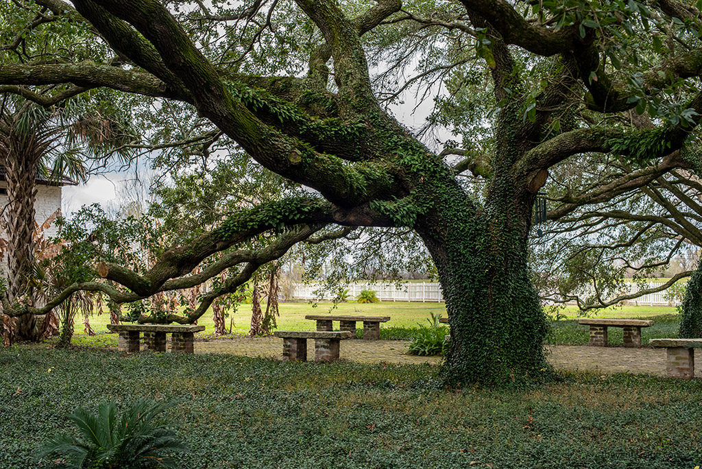 Best New Orleans Plantation Tours - Whitney Plantation