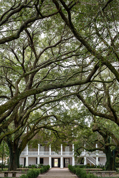 Best New Orleans Plantation Tours - Whitney Plantation