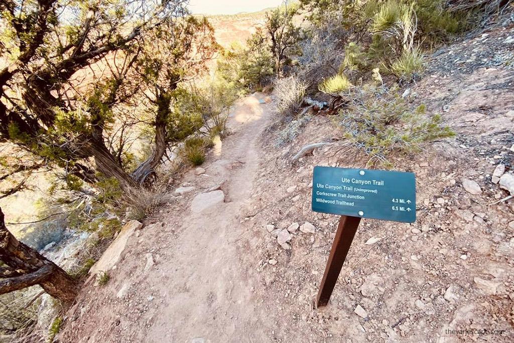 ute canyon trail