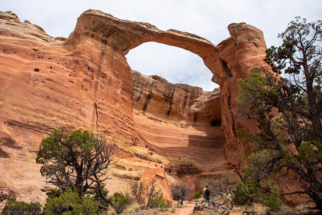 Rattlesnake Arches