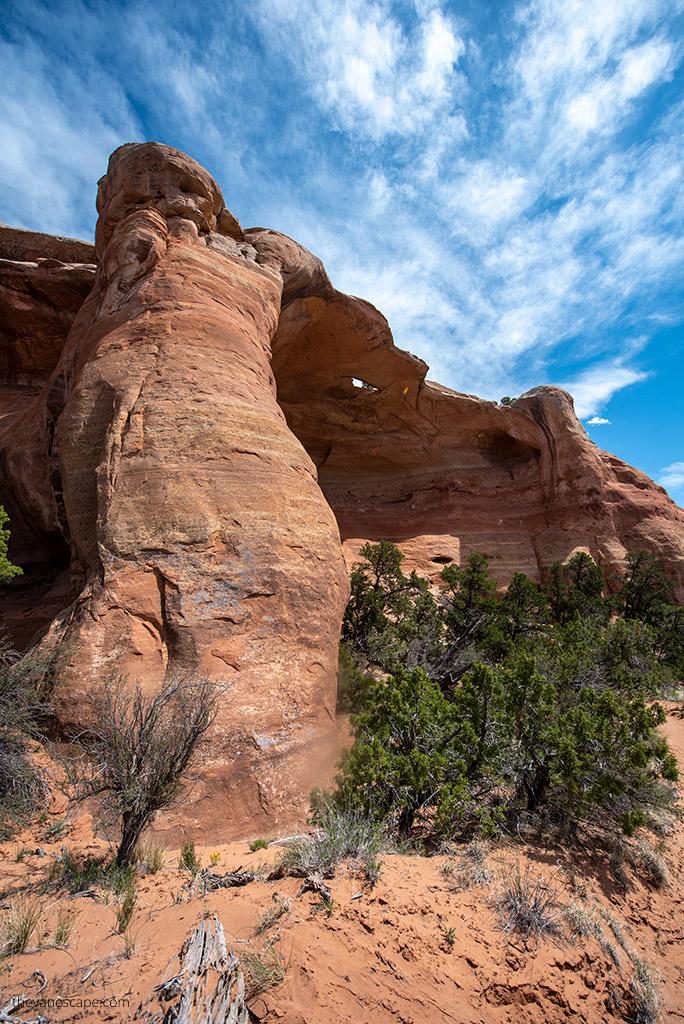 Rattlesnake Canyon Arches