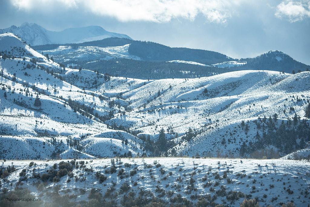 Yellowstone's Northern Range