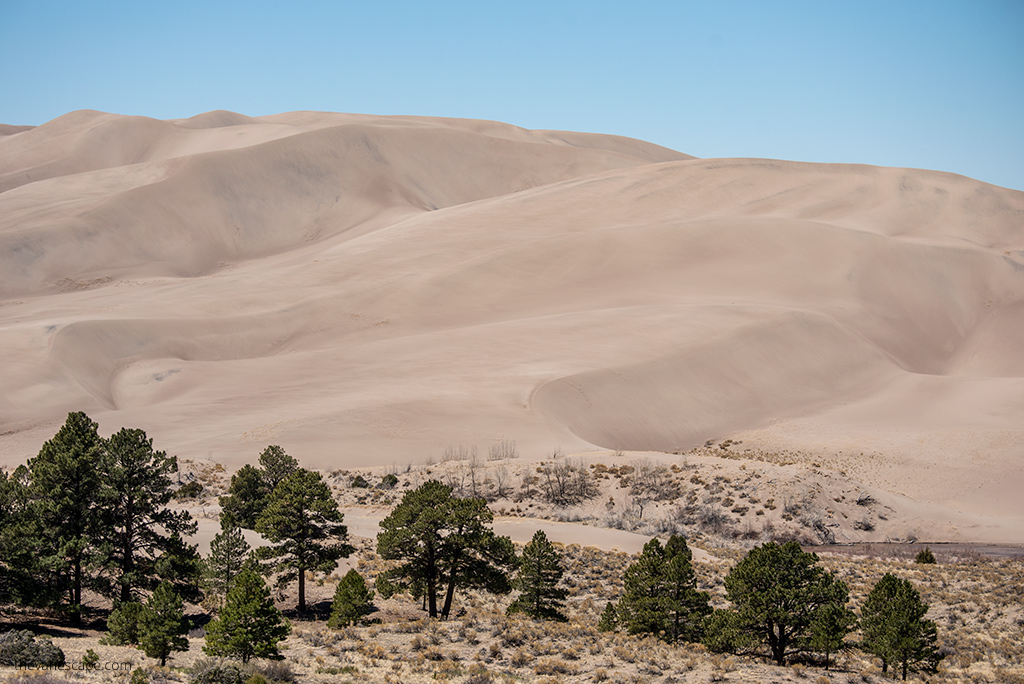 Things To Do In Great Sand Dunes National Park